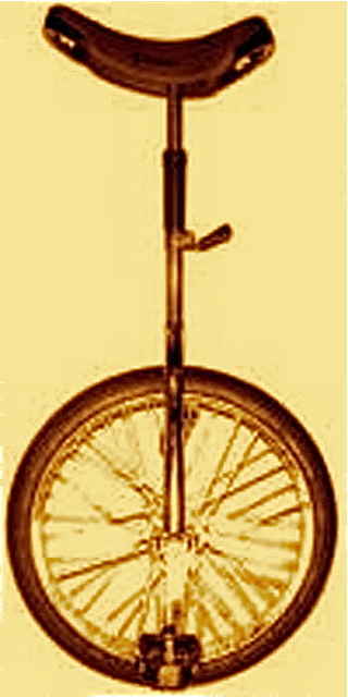 20-Inch-chrome-unicycle